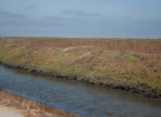 The 2040 General Plan policies direct growth and development toward vacant and underutilized sites to preserve the Hayward shoreline and hillsides as open space.