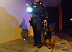 Hayward Police officers on patrol.