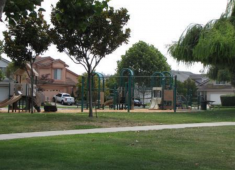 Example of a local park that serves as a centralized neighborhood amenity.