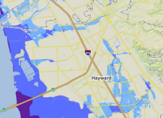 Areas of Hayward that are subject to flooding during a 100-year storm with coastal waves (purple), a 100 year storm (dark blue), and a 500-year storm (light blue).  Source: Association of Bay Area Governments
