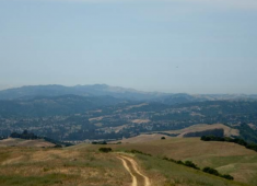 The eastern hillsides of Hayward.