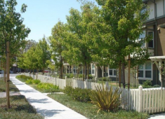 """Examples of """"Bay-Friendly"""" landscapes in Hayward."""