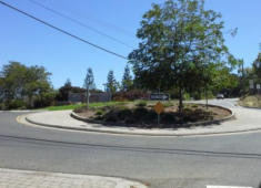 Example of neighborhood traffic calming measure: traffic circle.