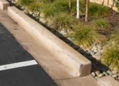 Examples of parking lots improved with landscaping that filters stormwater and provides shade.